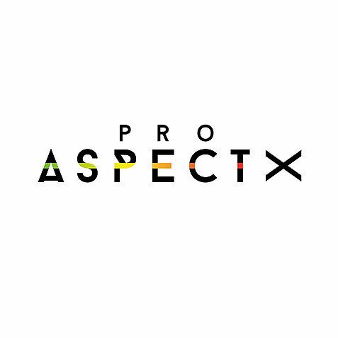 Pro-AspectX-Logo